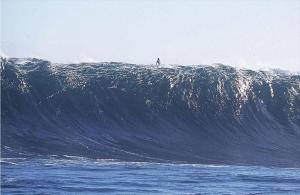 surfer-huge wave